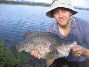 Golden Perch, PRFMA, Pine Rivers Fish Management Association
