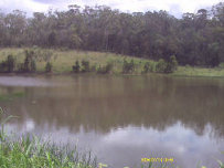 Lake Gaffney, PRFMA, Pine Rivers Fish Management Association
